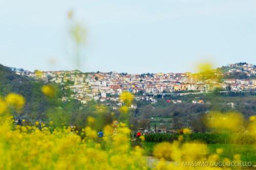 Centro urbano di San Gregorio Magno